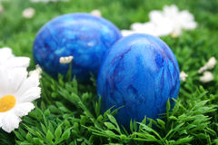 Easter eggs. Some colourful easter eggs on grass Royalty Free Stock Images