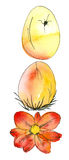 Easter Eggs. Watercolor painting and ink drawing, created and painted by the photographer Royalty Free Stock Photography