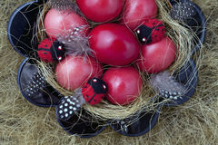 Easter Eggs. Bowl with Easter red eggs and ladybirds beetles Royalty Free Stock Photos
