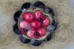 Easter Eggs. Bowl with Easter red eggs and ladybirds beetles Royalty Free Stock Photo