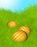 Easter eggs. Three striped easter eggs on the lawn Royalty Free Stock Photo