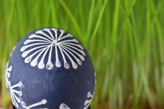 Easter eggs. In the grass Stock Photography