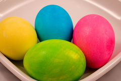 Easter Eggs. Four colored easter eggs red blue yellow green Royalty Free Stock Image