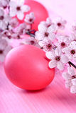 Easter eggs. Pink easter eggs on pink background Royalty Free Stock Images