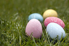 Easter Eggs. In dewy grass.  Shallow depth of field Stock Image