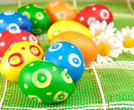 Easter eggs. With chamomiles over green background Royalty Free Stock Photography