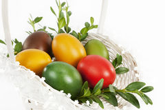 Easter eggs. Stock Images
