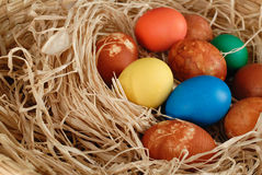 Easter eggs. Closeup of several colored Easter eggs Stock Image
