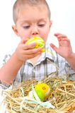 For Easter eggs. Stock Photography