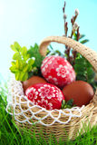 Easter eggs. Colorful painted easter eggs in basket stock images