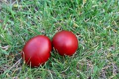 Easter eggs. Easter eggs on green grass stock photos