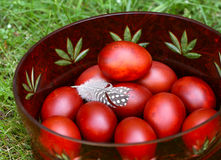 Easter eggs. Easter eggs on green grass royalty free stock photos