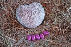 Easter eggs. Five eggs and a heart of stone in a nest of straw Royalty Free Stock Photo