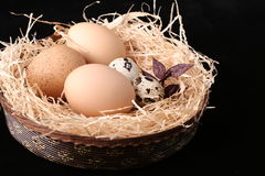 Easter eggs. In the basket Stock Image