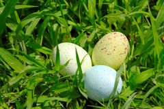Easter Eggs. Three painted easter eggs on the green grass background Royalty Free Stock Photography