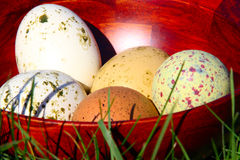 Easter Eggs. Painted easter eggs in a wooden bowl on the grass Royalty Free Stock Image