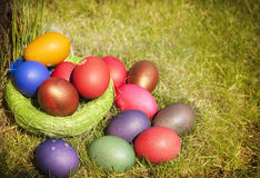 Easter eggs. Dyed Easter eggs in a nest, on the grass Royalty Free Stock Image
