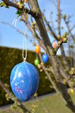 Easter Eggs. A lot of  on a tree Royalty Free Stock Photography