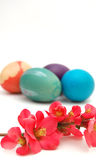 Easter eggs. Picurfe of easter eggs on a white Stock Photo