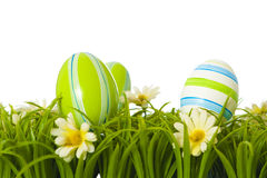 Easter eggs. On grass isolated on white stock photo