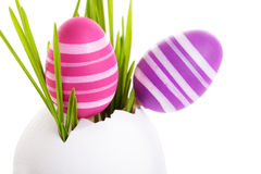Free Easter Eggs Royalty Free Stock Images - 28369759