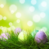 Easter eggs Royalty Free Stock Photography