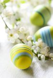Easter eggs. And branch with flowers on wooden background Royalty Free Stock Image