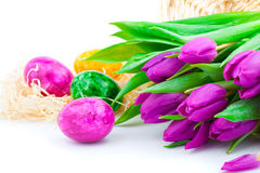 Easter eggs. And flower tulips, on white background Royalty Free Stock Images