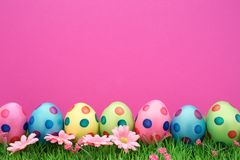 Easter Eggs. In a row with pink background  and copy space  Studio shot Royalty Free Stock Photos