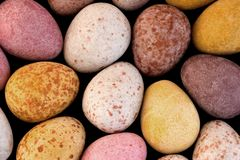Easter eggs. Miniature candy easter eggs background royalty free stock photo