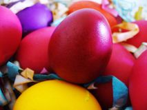 Easter Eggs. Macro shot of the coloured easter eggs Royalty Free Stock Images