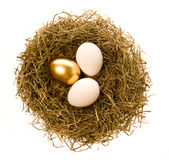 Easter eggs. Two simple and one gold eggs lay in a nest Royalty Free Stock Image