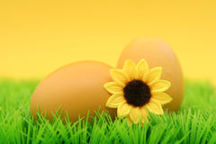 Easter eggs. On grass Royalty Free Stock Images