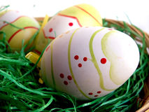 Easter eggs. In nest with fake grass royalty free stock photos