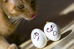 Easter Eggs. Show their emotion before their big day Stock Photos