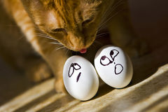 Easter Eggs. Show their emotion before their big day Royalty Free Stock Photos