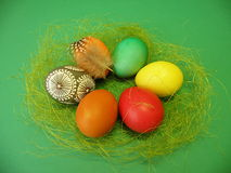 Easter eggs. In nest on green background Stock Images