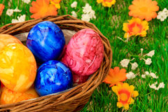 Easter eggs. Some Ester eggs in a basket royalty free stock image
