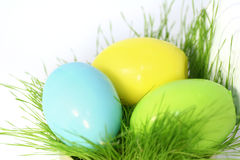Easter eggs. Colored easter eggs in a grass Stock Photos
