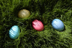 Easter Eggs. In the grass ready for the hunt Royalty Free Stock Image