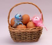 Easter Eggs And Chiken Stock Photos