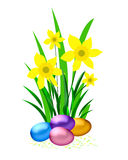 Easter Eggs And Daffodil Stock Photos