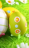 Easter eggs a background Stock Photography