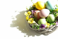 Easter eggs background with copy space. royalty free stock photography