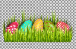 Easter eggs background with fresh green grass. Happy easter big hunt vector illustration. royalty free illustration