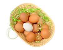 Easter eggs in a basket. Decorated on white background Stock Image