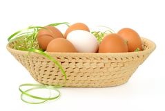 Easter eggs in a basket. Decorated on white background Stock Photos
