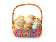 Easter eggs in basket Royalty Free Stock Image