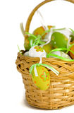 Easter eggs in basket Royalty Free Stock Photos