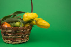 Easter eggs in a basket. On a green  background Stock Photography